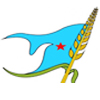 Partito Socialista Yemenita
